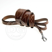 Luxury collars and leads